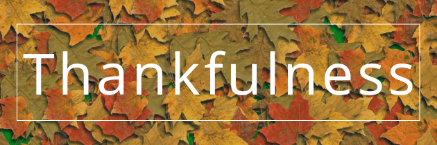 Things we are Thankful for – Vol. 1